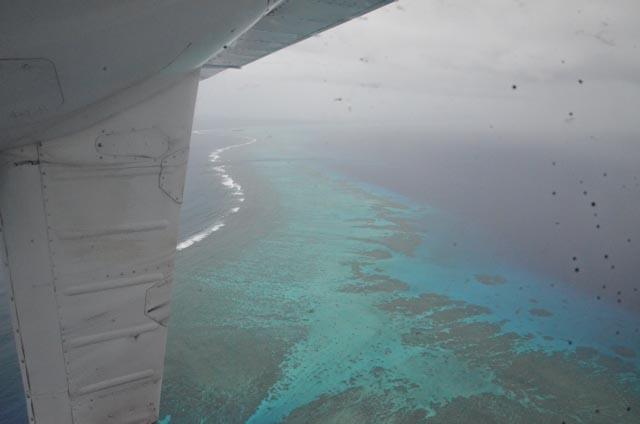 Korallrev dukker opp midt i havet
