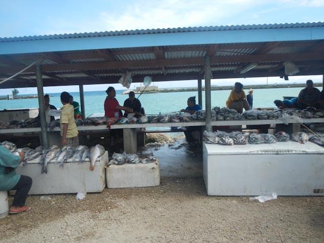 Det lokale fiskemarkedet